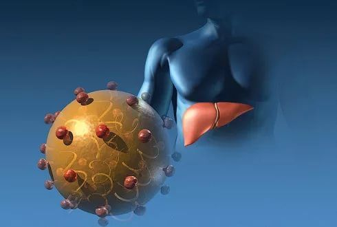 прививка от гепатита при планировании беременности
