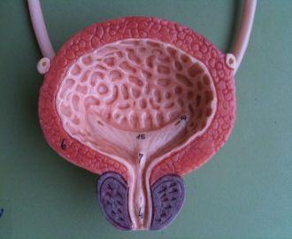 Лечение полипа уретры у женщин при помощи операции и народных средств