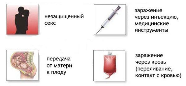 Гепатит путь передачи