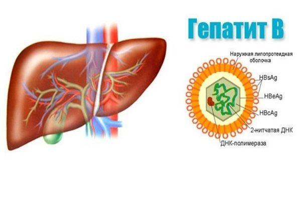 Гепатит в раны заражение