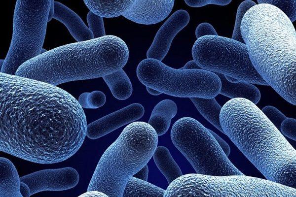 Виды и причины бактериального неспецифического кандидозного хламидийного трихомонадного гонорейного уретрита у мужчин