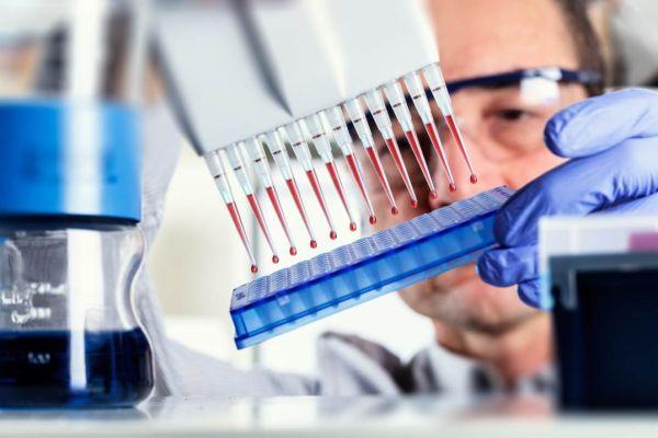 Антитела гепатита с в организме