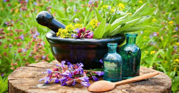 народная медицина против трихомониаза