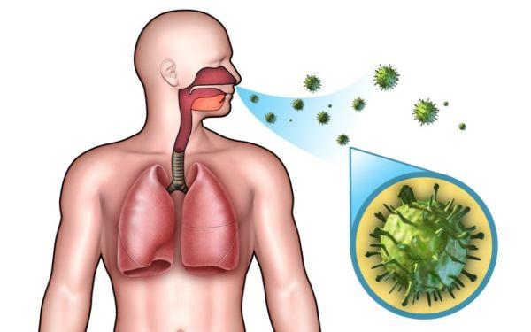 Хломидии пневмонии в крови разрушают суставы сабельник суставит