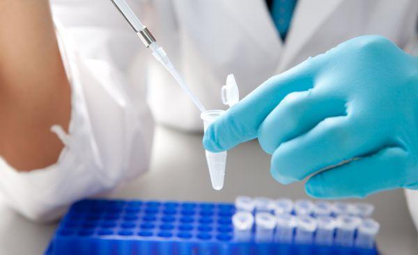 Вирус герпеса 8 типа – онкогенный микроорганизмПарашистай