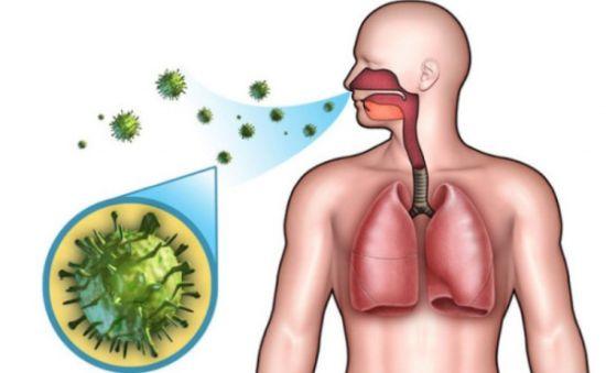 как можно заразиться ЦМВ