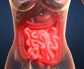 Проявление и лечение кандидоза кишечника