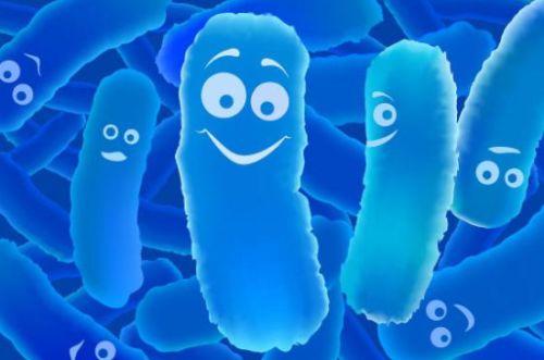 лактобактерии при молочнице