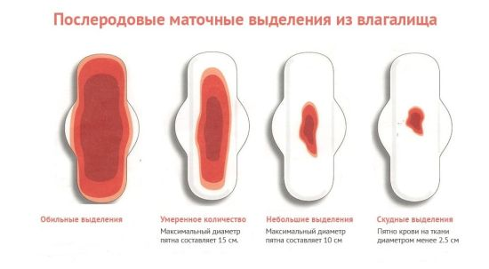 Сколько дней идут кровяные выделения после родов