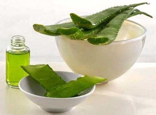 лечение папиллом при помощи лекарственных растений