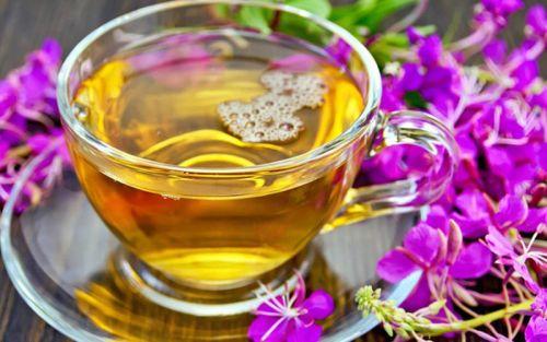 иван-чай при лечении простатита