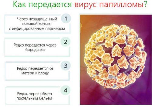 как передается вирус папилломы