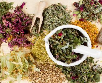 Какими травами нужно лечить простатит?