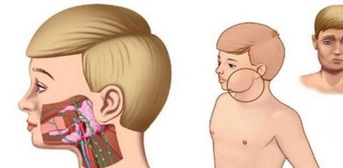 Лечение мужских болезней бесплодие