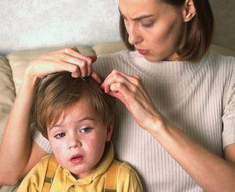 Что нужно делать, если у ребенка появились вши, как лечить педикулез?