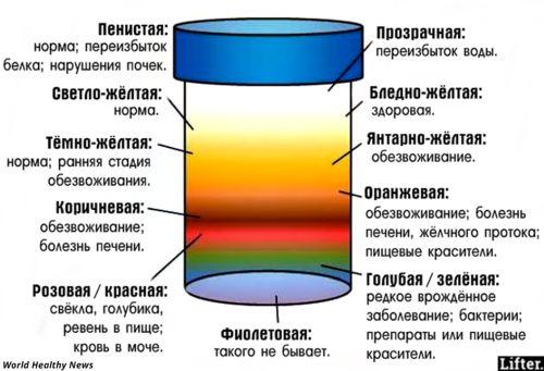 от чего зависит цвет мочи