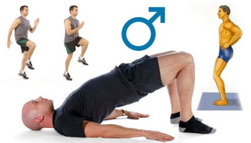 физические упражнения для усиления потенции