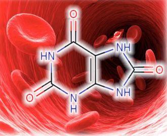 Какая норма мочевой кислоты в крови, почему она может повышаться?