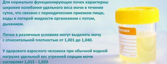 Относительная плотность мочи: норма и причины повышения, уролог в Москве.