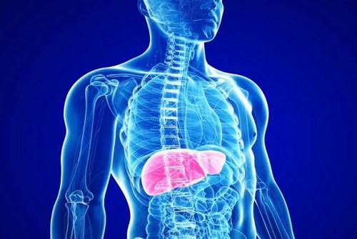 аутоиммунный гепатит 2 типа