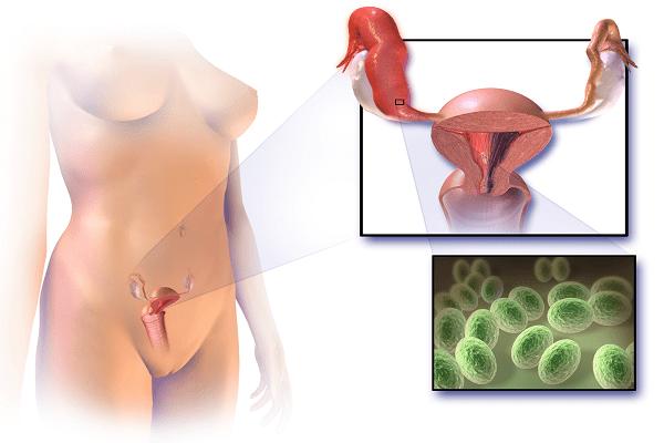 Передаетсся ли микоплазма при оральном сексе