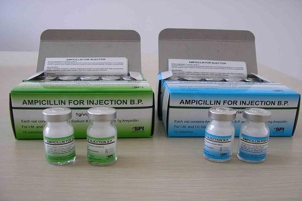 Ампициллин беременным инструкция по применению 87