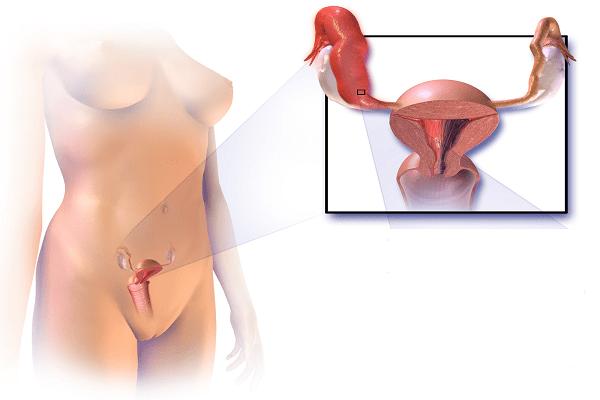 Техника тонкости и секреты анального секса